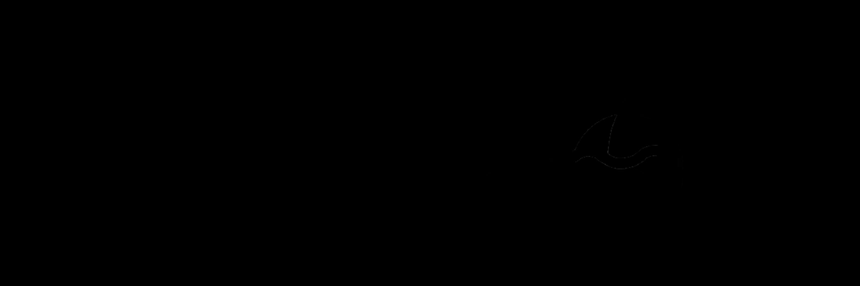Sharkhole Logo